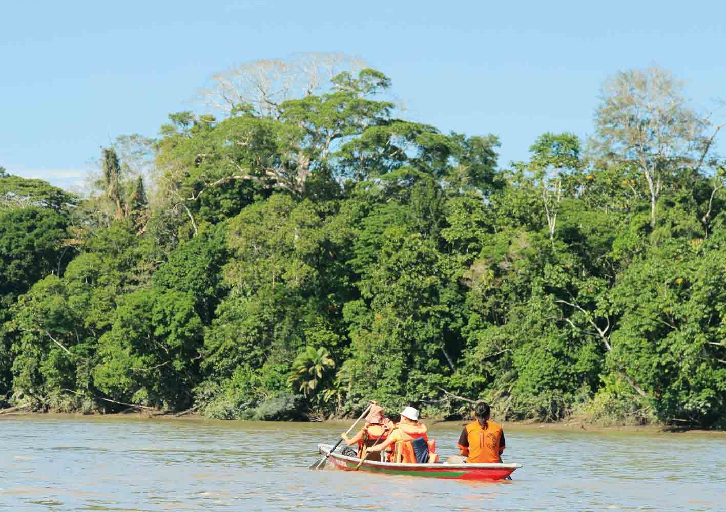 Kanu- und Bootsfahrten im Urwald, Ecuador