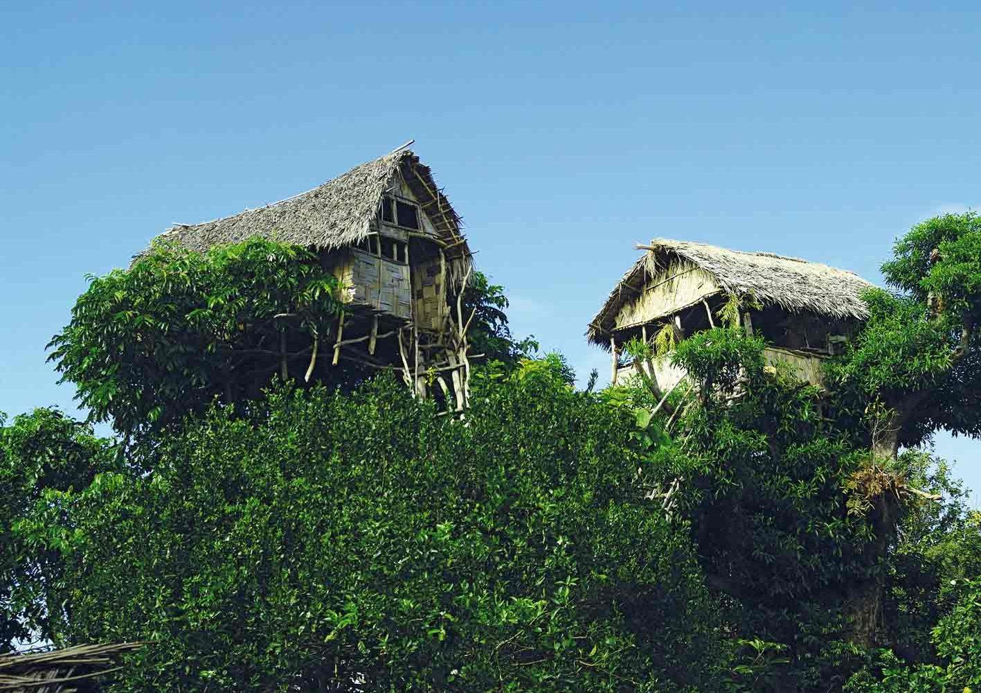 Baumhaus auf der Insel Tanna