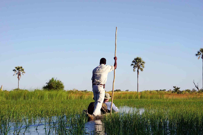 Mit dem Mokoro (Kanu) im Okawango-Delta unterwegs, so erleben Sie die Tierwelt hautnah.