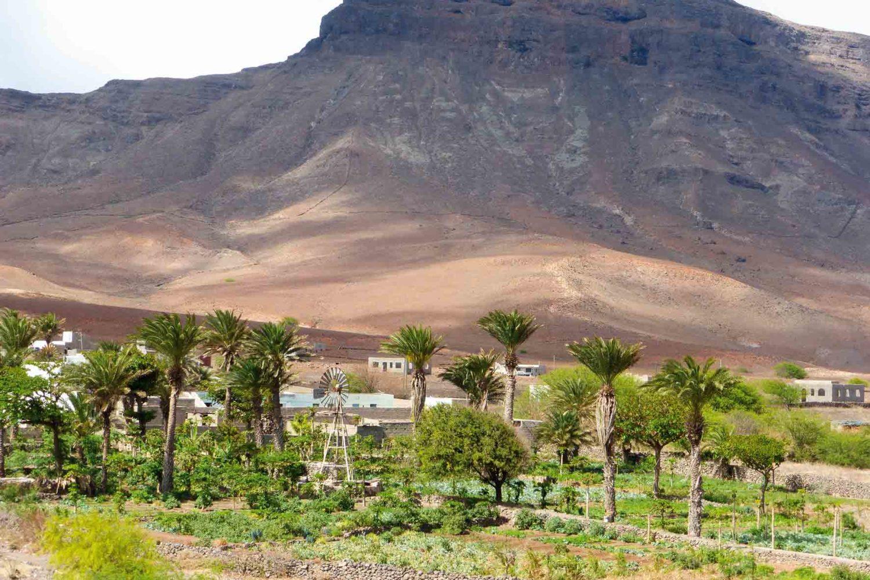 Grüne Oase beim Rio Julião, Cabo Verde