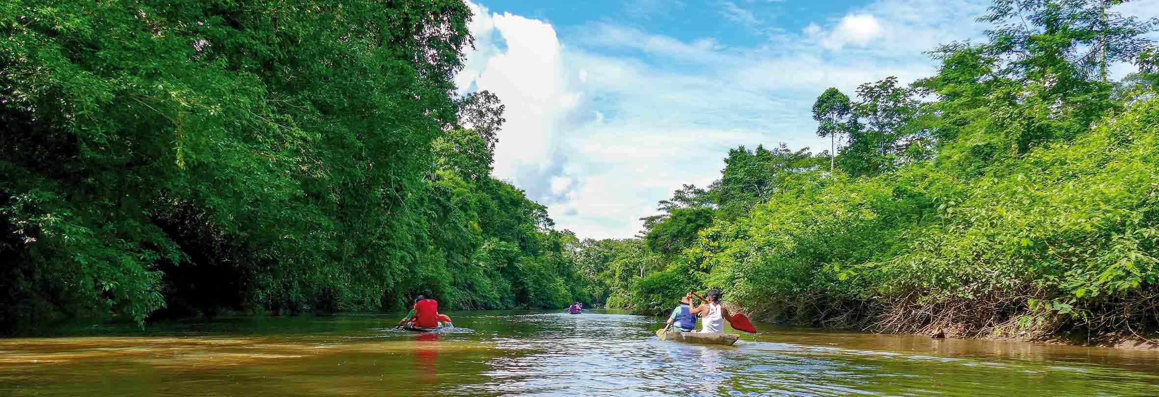 Urwald-Exkursion mit dem Kanu, Ecuador