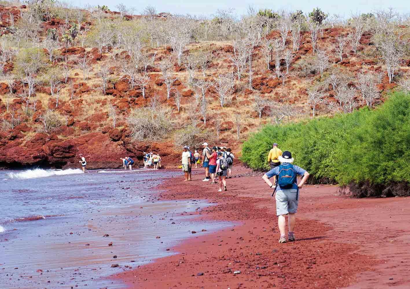 Wir unternehmen auch informative Wanderungen über die Inseln