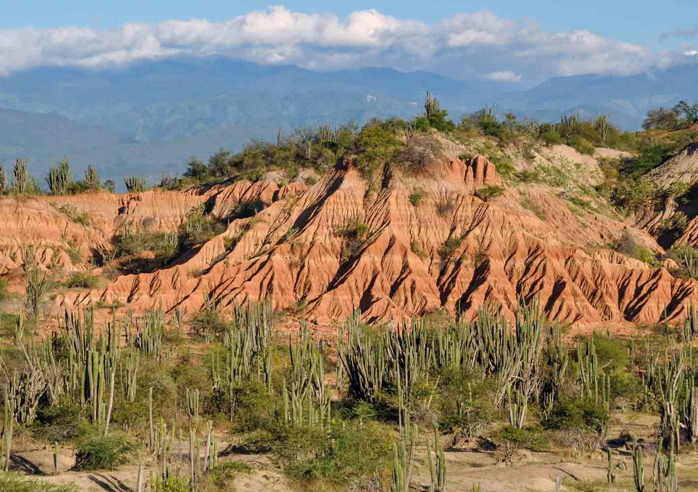 Wanderung in der Tatacoa-Wüste