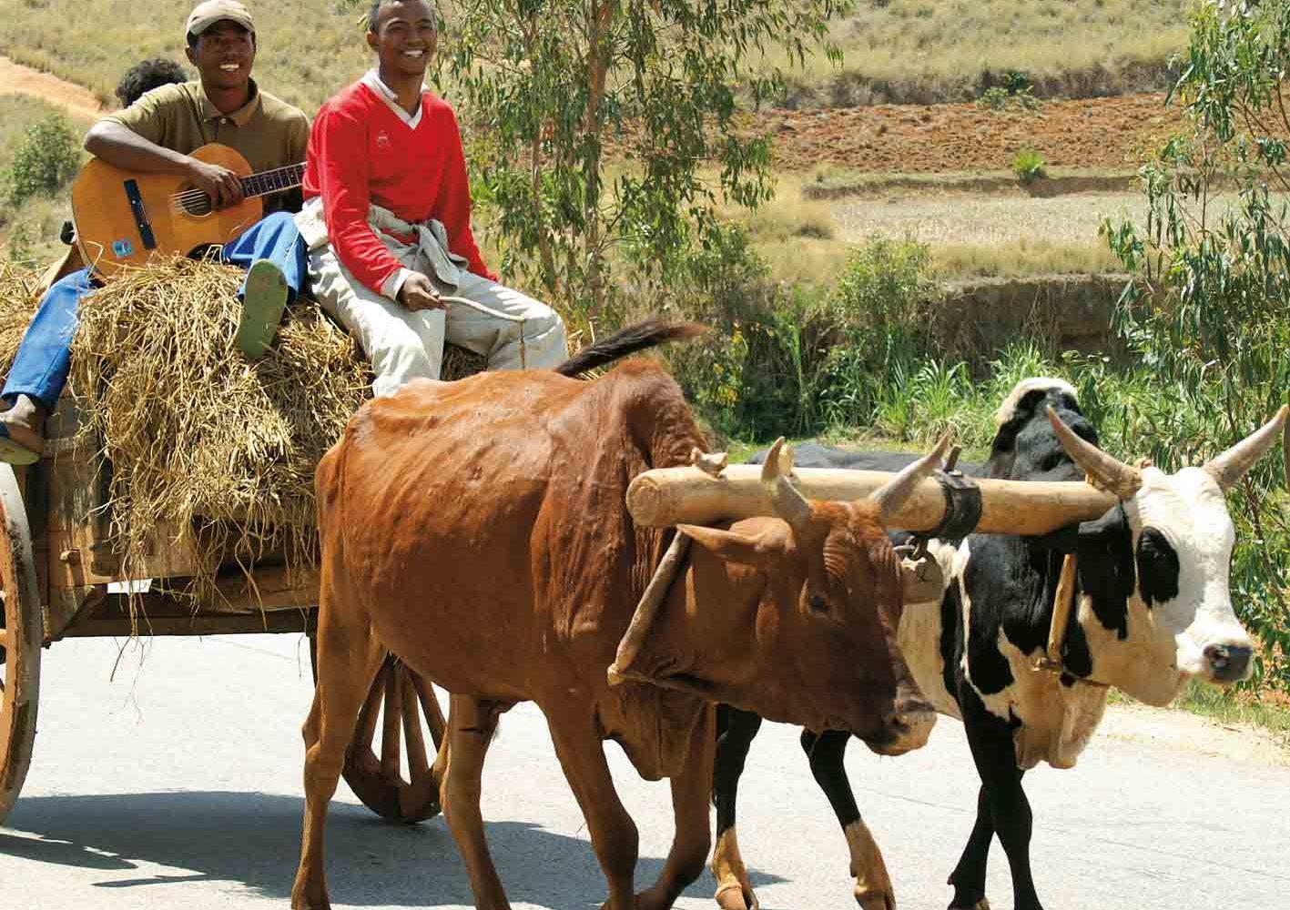 Lebensfreude und Musik, das ist Madagaskar.