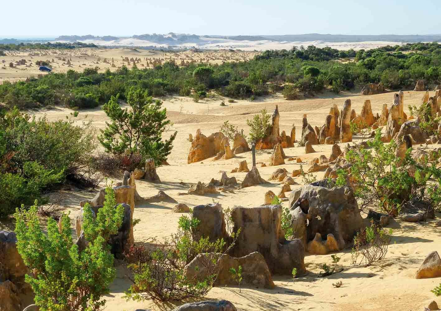 Pinnacles im Nambung-Nationalpark, West-Australien