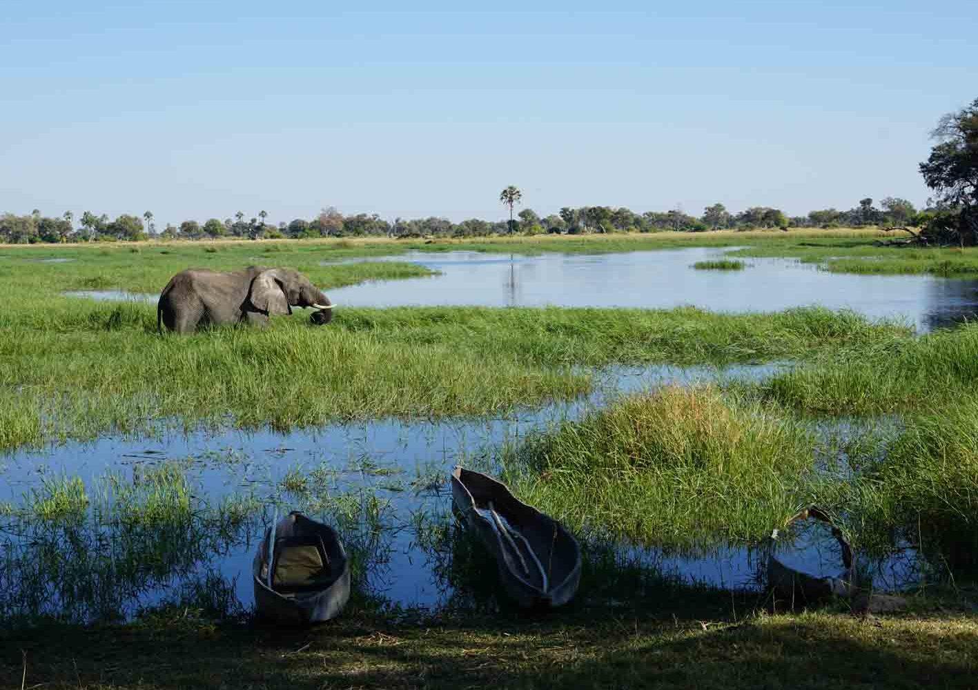 Okawango-Delta, Botswana
