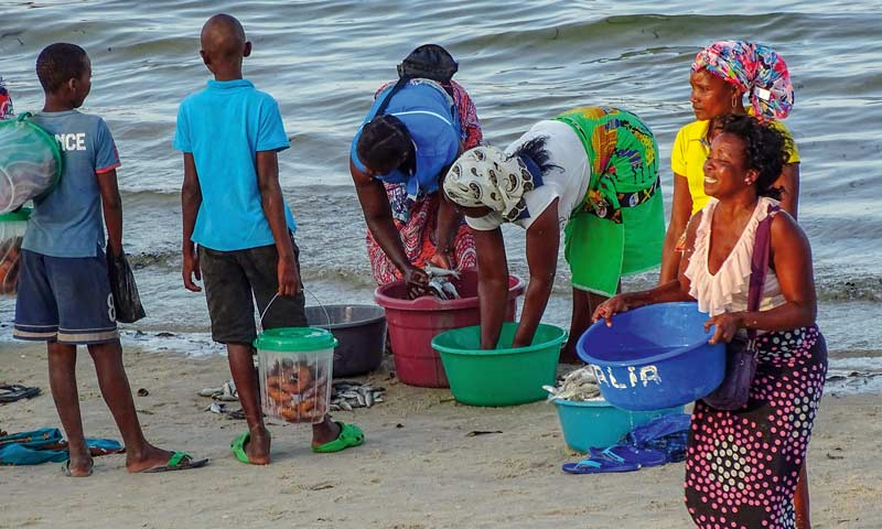 Frauen mit ihrem Fischfang an der Küste von Vilanculos