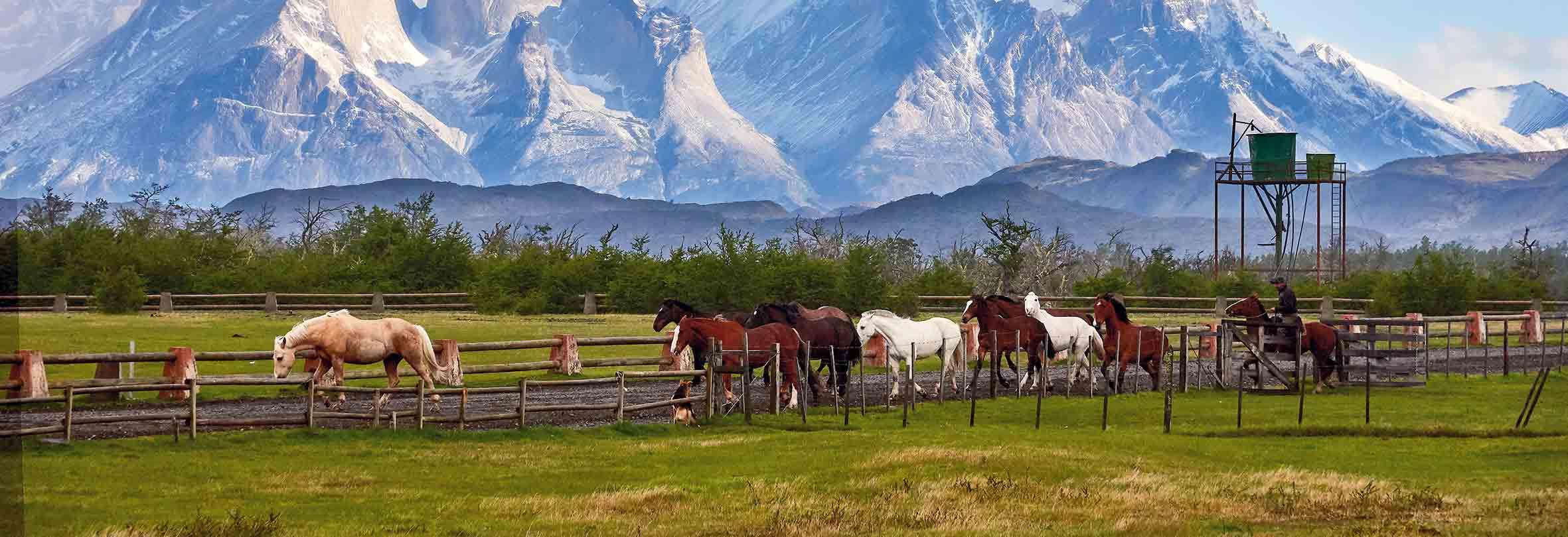 Patagonien, Torres del Paine-Nationalpark