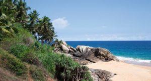 Agastya Ayurveda Garden, Meer und Strand, Palmengarten, Kerala, Südindien
