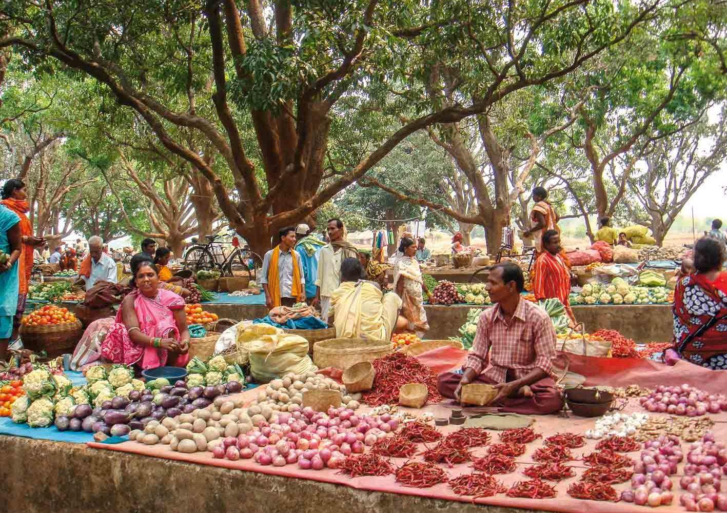 Marktbesuch in der Nähe von Jeypore, Indien