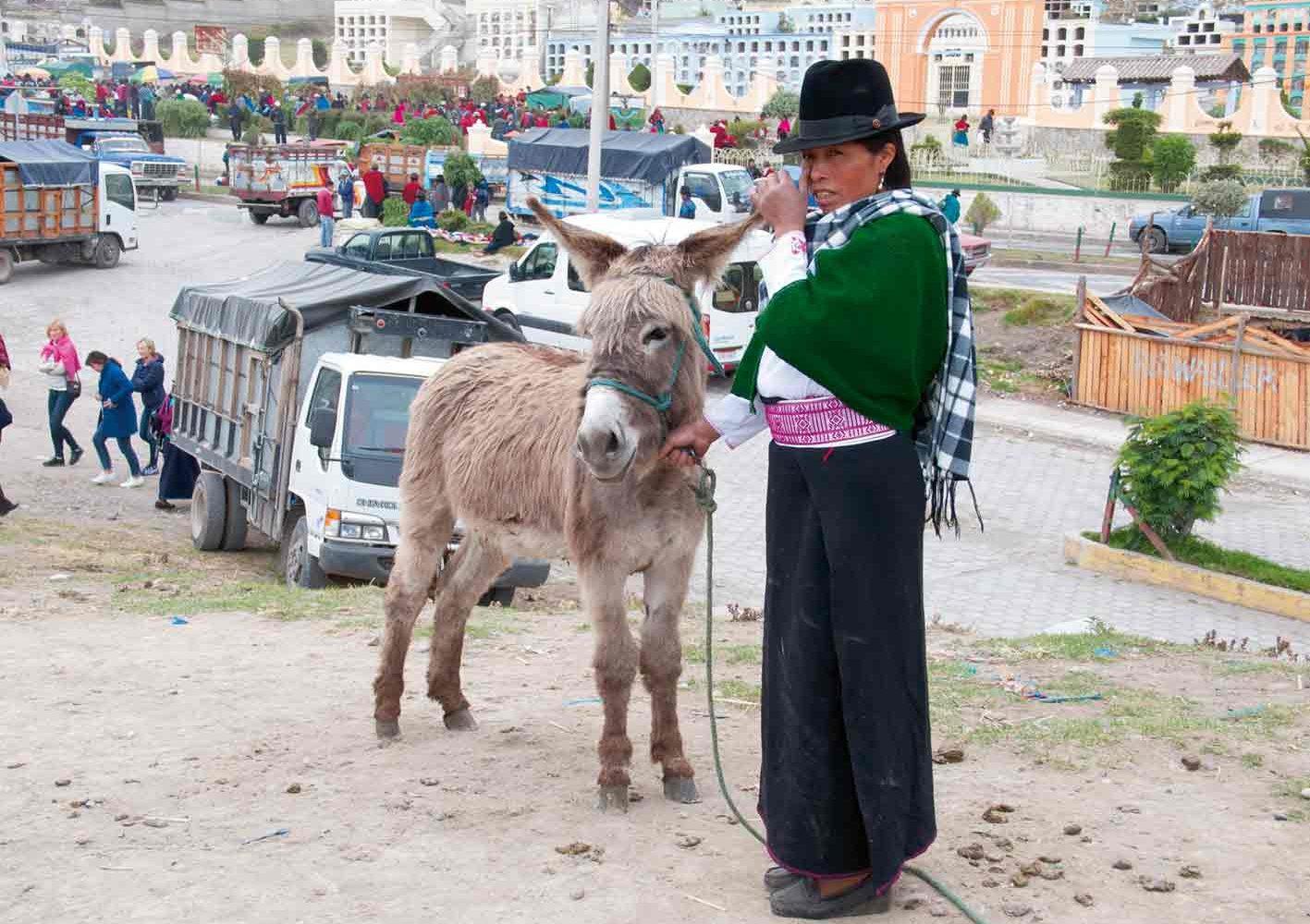 Wir besuchen bunte Indio-Märkte im Hochland von Ecuador