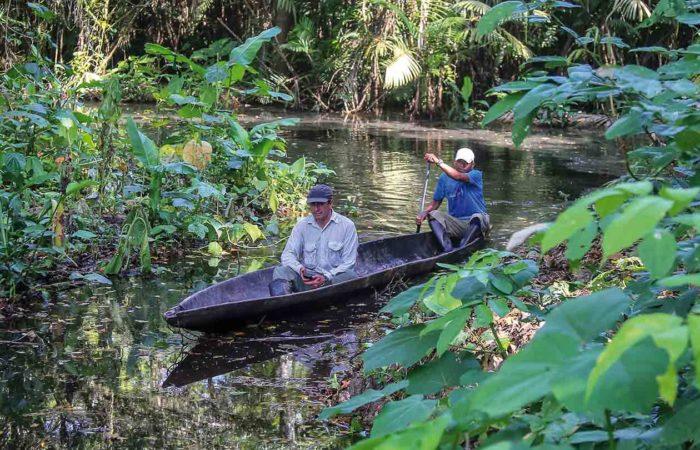 Wir entdecken den Amazonas von Ecuador per Kanu, zu Fuss und per Motorboot.