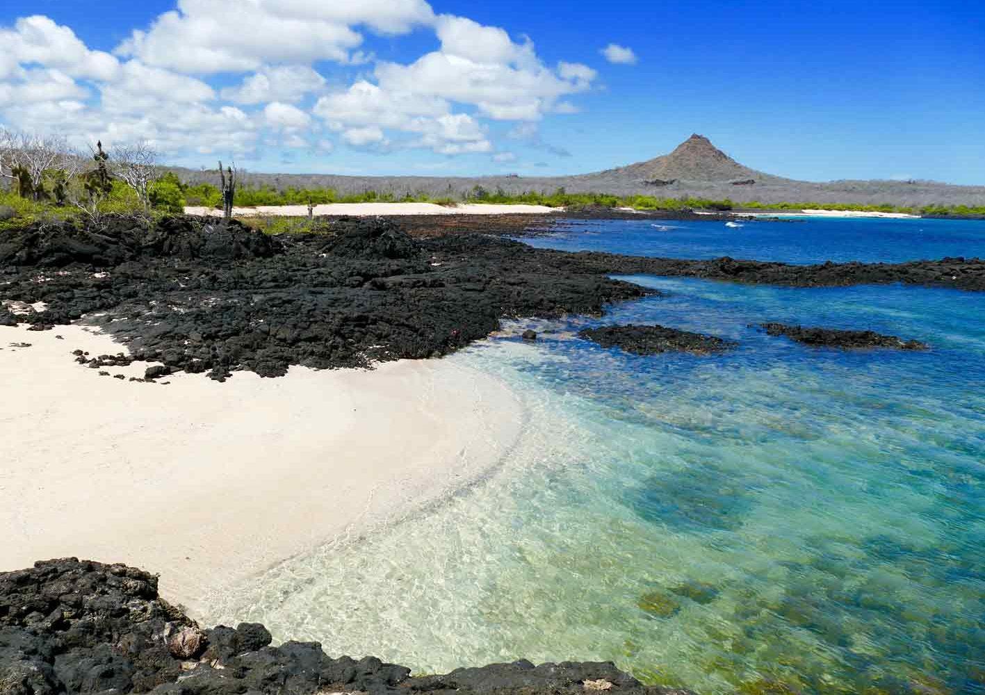 Die Landschaft von Galápagos ist geprägt von Vulkanen.