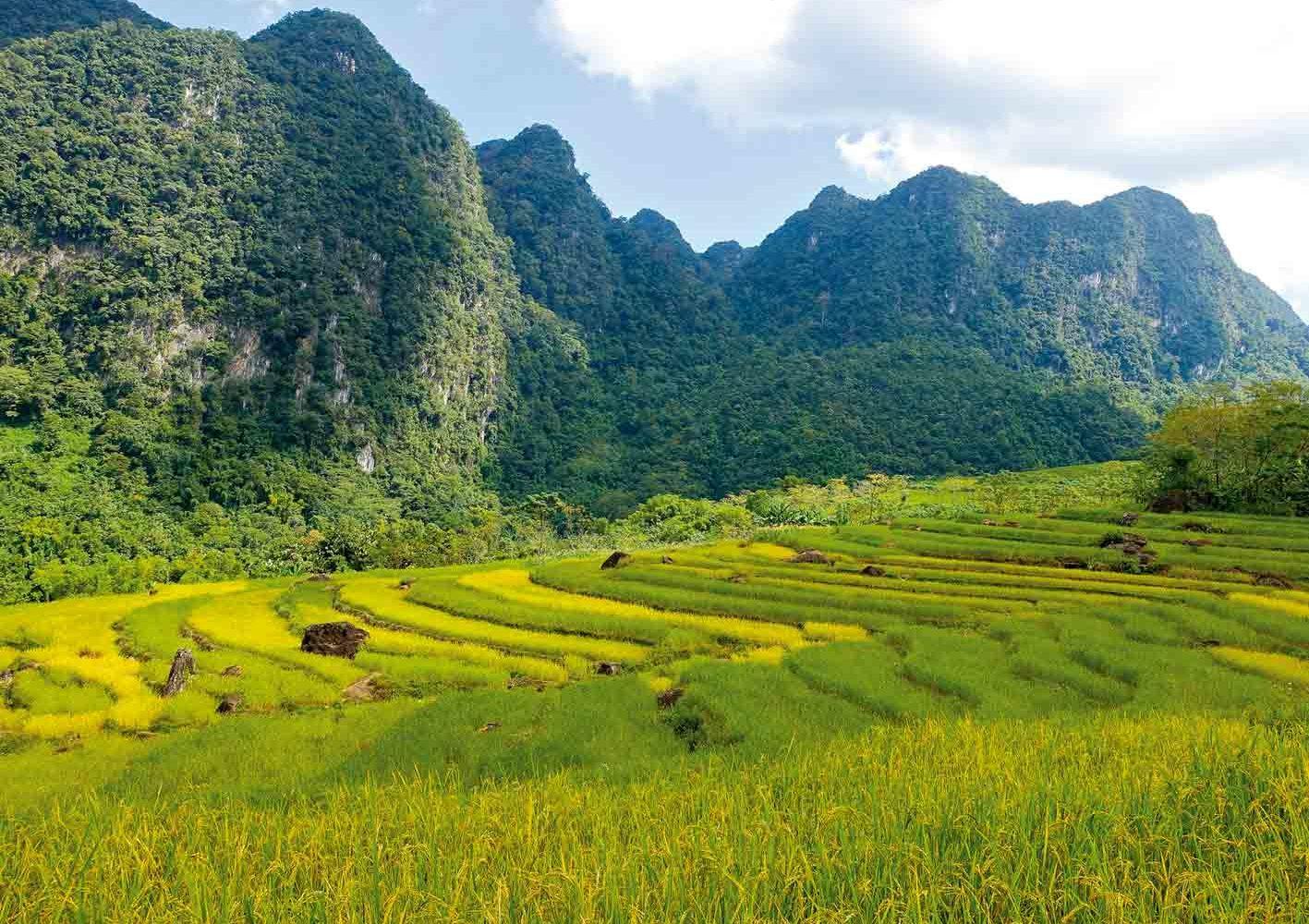 Wanderung durch die legendären Reisterrassen, Vietnam