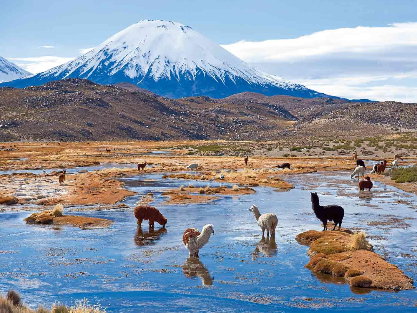 Wunderschöner Lauca-Nationalpark im Anden-Hochland von Chile Foto: Jeremy Richards
