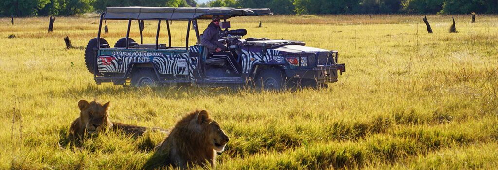 Botswana-Safari im 4x4-Fahrzeug